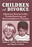 Children of Divorce: Adjustment, Parental Conflict, Custody, Remarriage, and Recommendations for Clinicians
