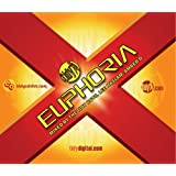 Tidy Euphoria: Mixed By the Tidy Boys Lee Haslam and Amber D