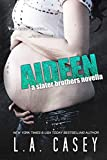 Aideen (Slater Brothers) (English Edition)