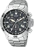 Citizen Mens BL5250-53L Eco-Drive Titanium Perpetual Calendar Chronograph Watch