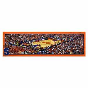 Buy NCAA Syracuse Orangemen Panoramic Arena View Wood Sign, 9 x 30-Inch by WINAV