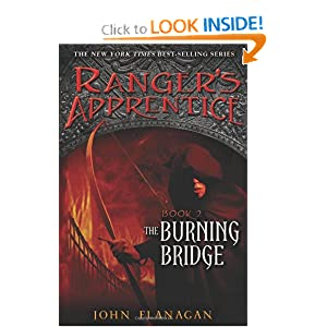 Book 2: The Burning Bridge