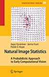 Natural Image Statistics: A Probabilistic Approach to Early Computational Vision.