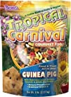 F.M. Browns Tropical Carnival Guinea Pig Food 20-Pound