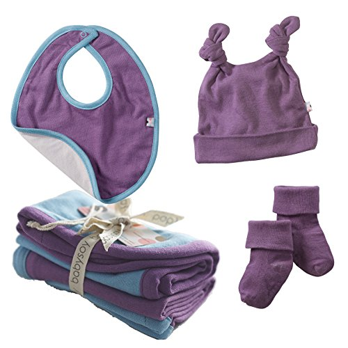 Babysoy Soy Soft Small Accessories Set In Eggplant (Bib, Socks, D. Knot Hat, Burpie) (6-12M) front-543311
