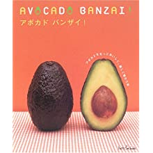 アボカドバンザイ!—アボカドをもっとおいしく、楽しく味わう本 (ハッピータイムブックス)
