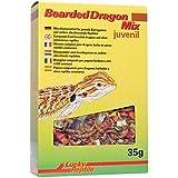 Lucky Reptile Bearded Dragon Mix Juvenil 35 g, 1er Pack (1 x 35 g)