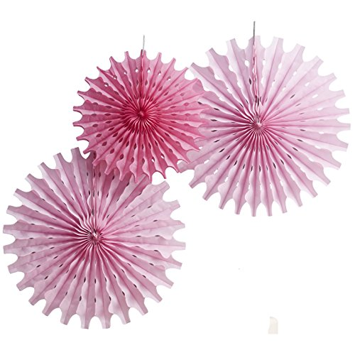 Ginger Ray Floral Fancy Pink Tissue Hanging Fan Wedding & Party Decorations, Mixed (Pink Fan Decoration compare prices)