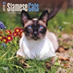 Siamese Cats 2014 Square 12x12