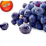 New Seeds 2015!100 PCS/Lot Seedless Black Grape Seeds Advanced Fruit Seed Natural Growth Kyoho Gardening Fruit...
