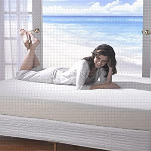 Spa Sensations 6'' Memory Foam Mattress Queen