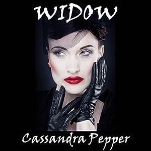 Widow Audiobook