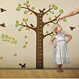 Kids Height Scale On Colorful Tree With Birds Wall Art Decal