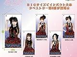セガ AKB48 BIGタペストリー VOL.3 篠田麻里子
