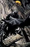 Fabian Nicieza Batman Time And The Batman HC (Batman (DC Comics))