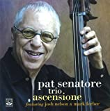 Pat Senatore Trio Ascensione