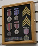 Display Case Cabinet Shadow Box for pins and medals, with glass door, Oak Finish (PC02-OA)