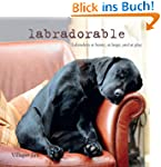 Labradorable: Labradors at Home, at P...