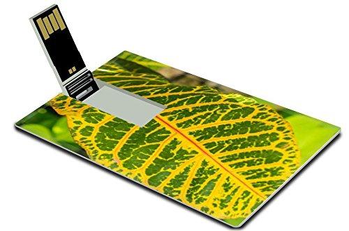 liili-32gb-usb-flash-drive-20-memory-stick-credit-card-size-image-id-29499762-colorful-pattern-of-a-