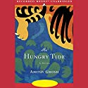 The Hungry Tide Audiobook by Amitav Ghosh Narrated by Firdous Bamji