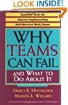 Why Teams Can Fail and What To Do Abo...