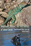 img - for Amphibians, Reptiles, and Their Habitats at Sabino Canyon (The Southwest Center Series) book / textbook / text book