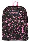 Classic Jansport Superbreak Backpack (Lipstick Pink Tea (T5010AK))