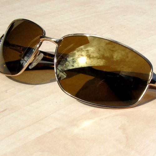 eagle eyes sunglasses  [] eagle