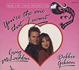 Debbie Gibson You're the One That I Want