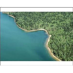 Lake Baikal Wildlife | RM.