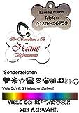 Anhänger fürs Halsband Knochen mit Motiv-Sonderzeichen. Viele Farben & Schriftarten personalisiert m. Name, Tel. ...