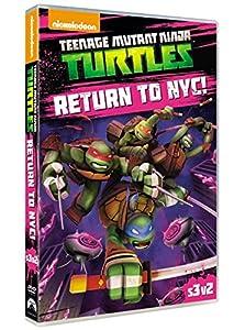 Teenage Mutant Ninja Turtles: Return To NYC [DVD] [2014]