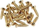 Fender Pickguard/Control Plate Mounting Screws - Gold