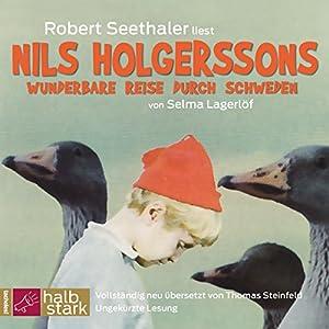 Nils Holgerssons wunderbare Reise durch Schweden Audiobook