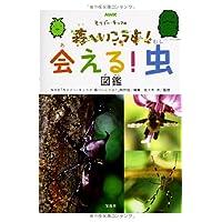 NHK モリゾー・キッコロ 森へいこうよ! 会える! 虫図鑑
