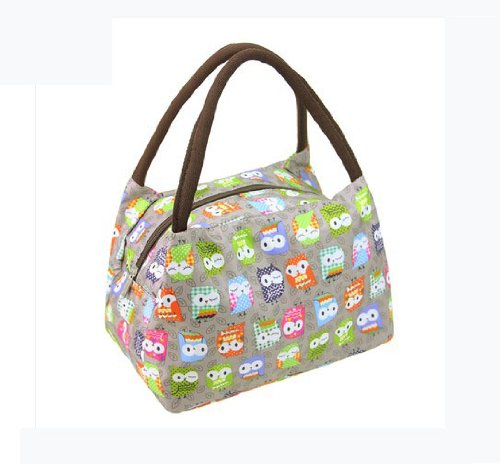 Why Should You Buy Fashion OWL Oxford cloth water proof Handbag meal bag for travel camping work sch...