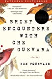 Brief Encounters with Che Guevara: Stories by Fountain, Ben (2007) Paperback
