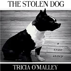 The Stolen Dog Audiobook