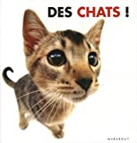 echange, troc Rod Green - Des chats !