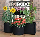 Grow Bags Square Foot Fabric Planter Raised Bed Aeration Container (Pack of 4)