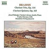 Clarinet Trio And Quintet Brahms