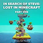 In Search of Steve: Lost in Minecraft, Part One |  Innovme Media