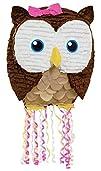 19 Owl Pink Pull-String Pinata