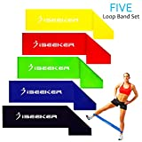 Resistance Loop Bands, 5 Levels of Strength Pull-up Equipment by iSeeker for Fitness Stretching and Physical Therapy Workouts Training Legs, Ankles, Arms in Home Gym for Men and Women