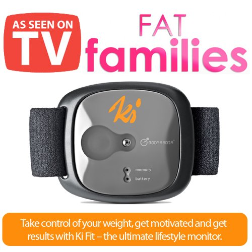 Fat Families Calorie Monitor