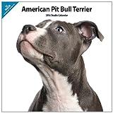 American Pit Bull Terrier 2014Wall Calendar