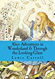 img - for Alice Adventures in Wonderland & Through the Looking-Glass book / textbook / text book
