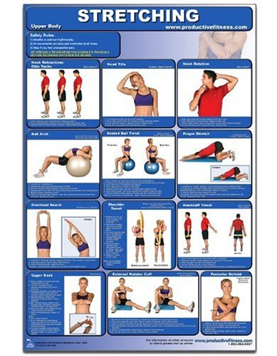 Stretching-Upper Body Laminated
