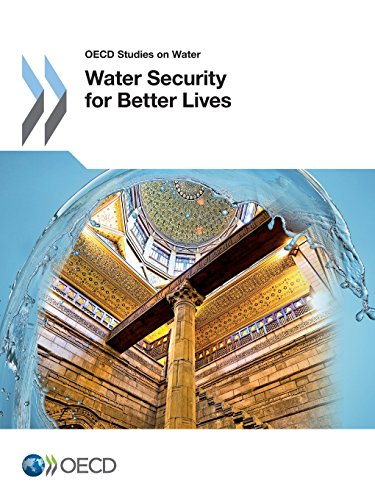 Water Security for Better Lives (OECD Report)