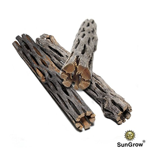 SunGrow® Natural Cholla Wood, 3 Pieces, 5 inches Long: Aquarium Decoration and Chew Toys for small pets